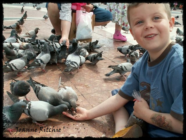 Barcelona Bird Boy!