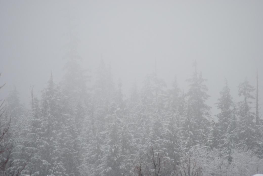 SNOW TIME!!!