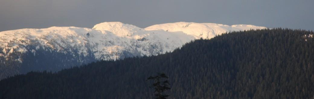 Sunshine on snow = beautiful!