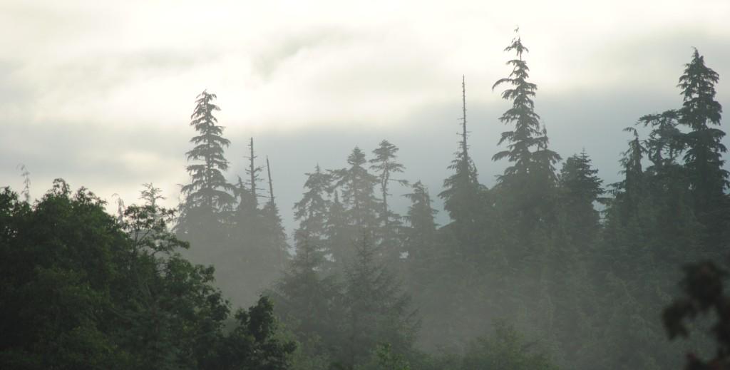 Haze or cloud - hard to say!
