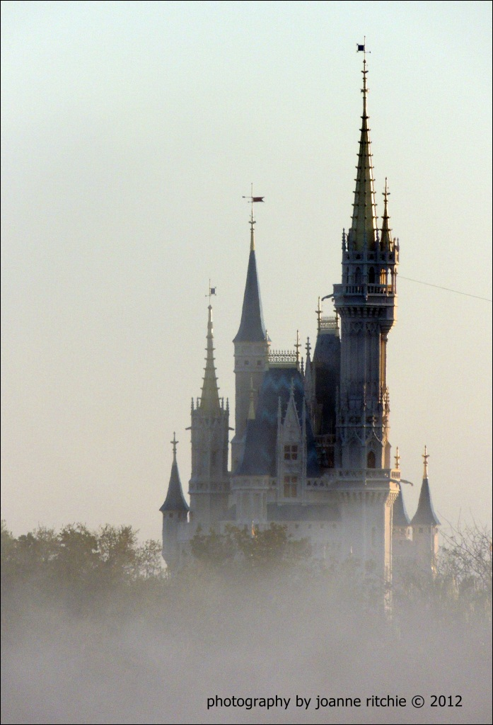 Magic Kingdom of a morning