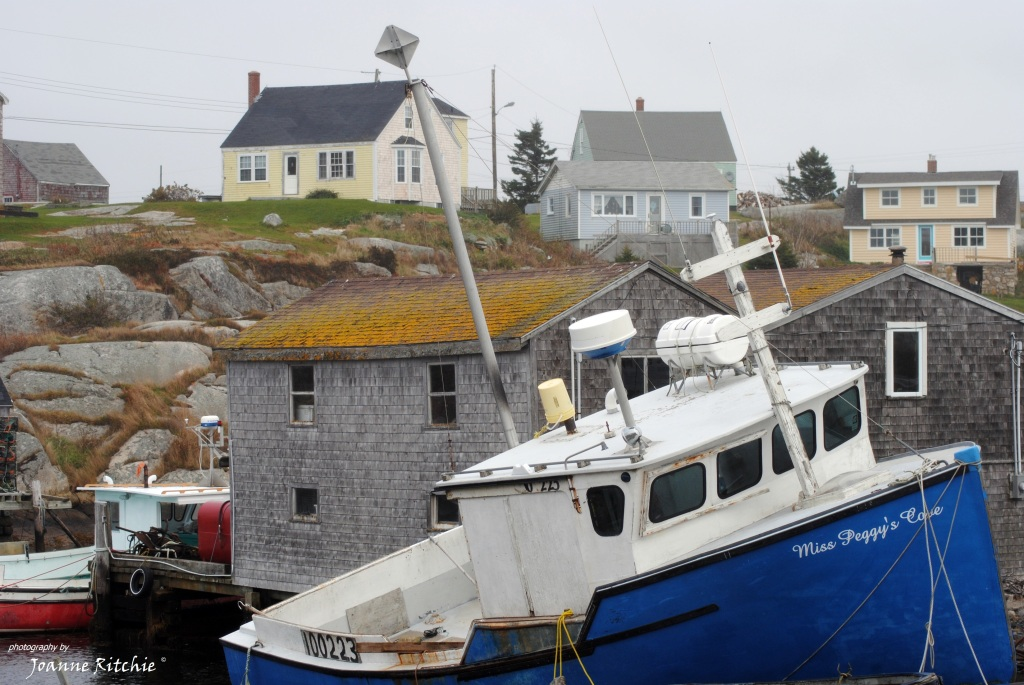 Miss Peggy's Cove