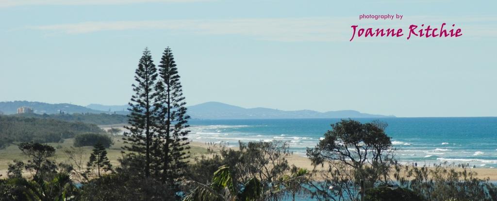 Looking up the Queensland Coast!