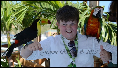 Harrison and his birds - what a collection!