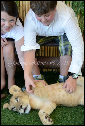 Lion Cub and kidz