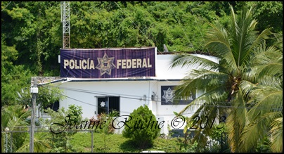 Federal Police Mexican Style
