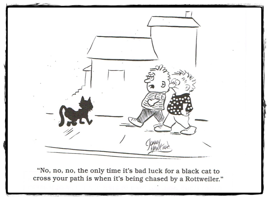 Black Cats Bad Luck