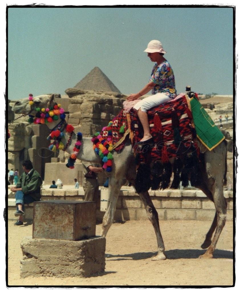 Lola ticking a bucket list item at Giza, Eygpt