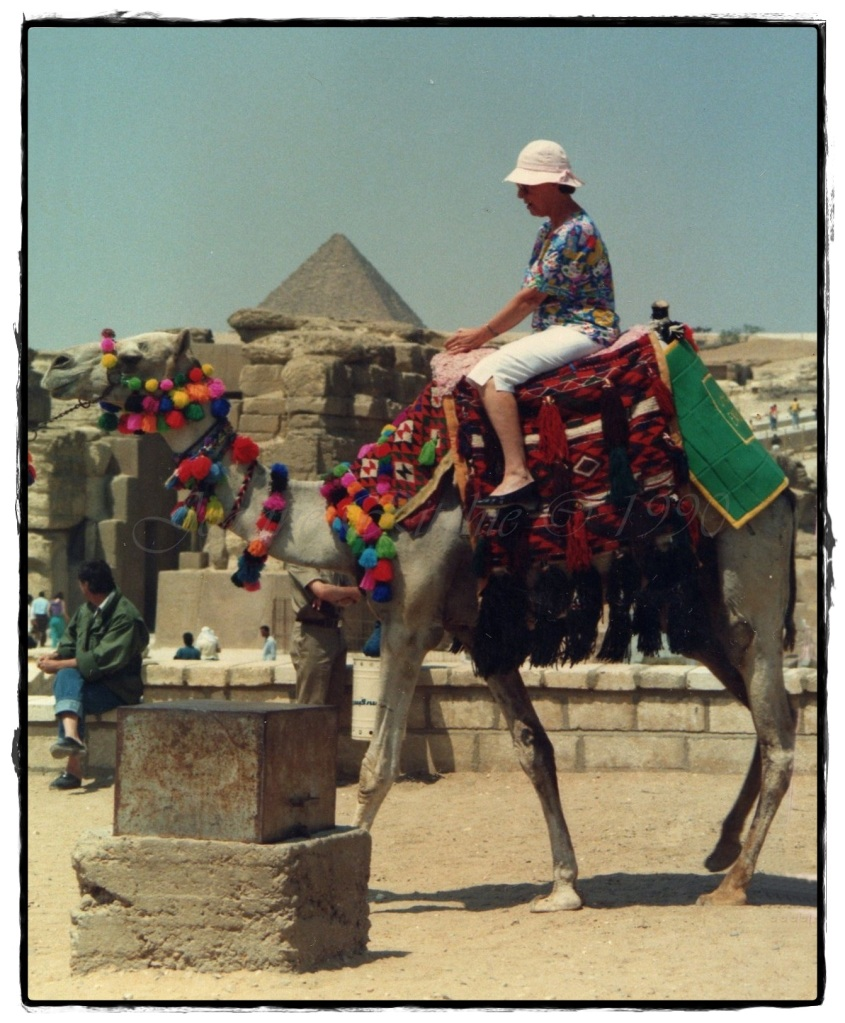 Lola ticking a bucket list item at Giza, Eygpt