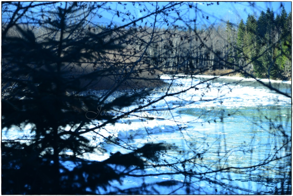 Watching the flowing ice through the trees - glorious!