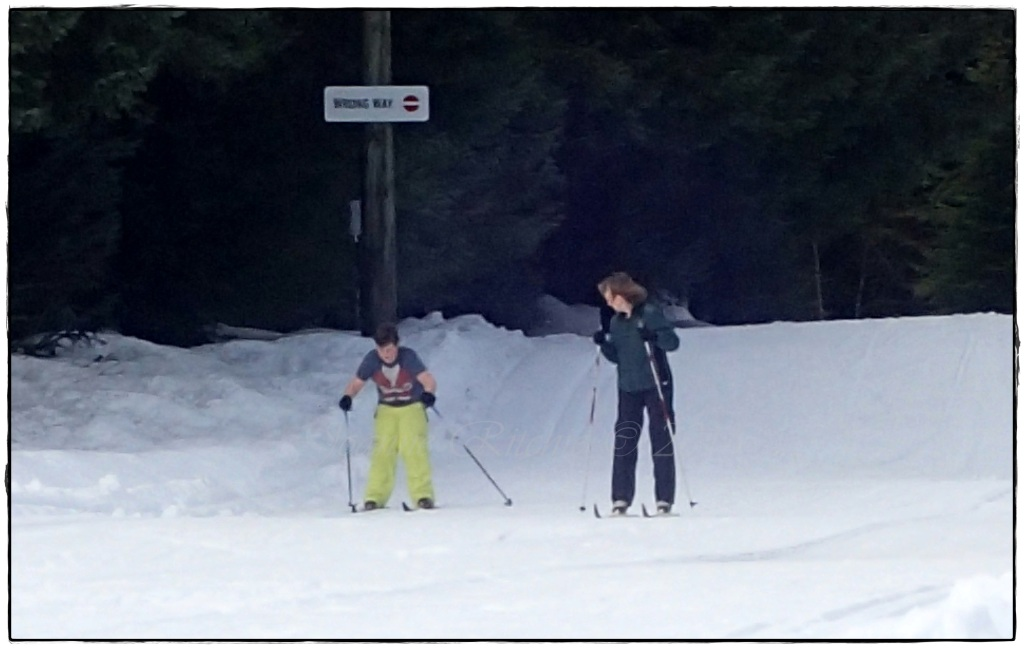Cross-country skiing - what a fabulous success!!!